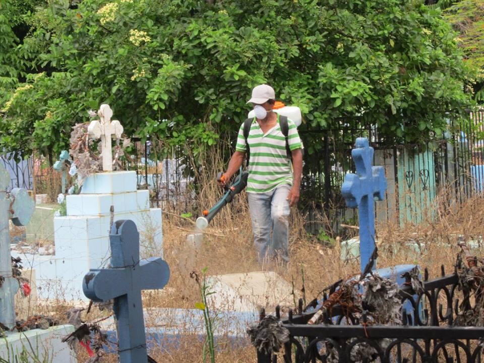 Fumigación En Cementerio General Norte
