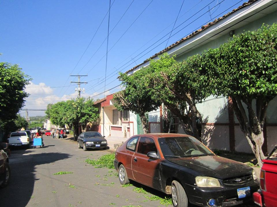 Poda de Arbustos y Maleza en la 8ª Calle Poniente y 3ra Calle Pte